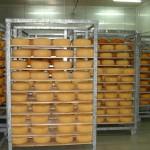 Судан, завод по переработке молока на 30 000 л/день