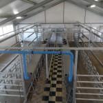 Казахстан: проект молочной фермы на 500 голов