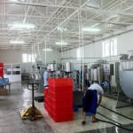 Узбекистан, завод по переработке молока на 10 000 л/день
