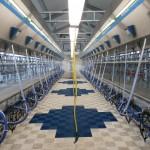 Казахстан: проект молочной фермы на 750 коров